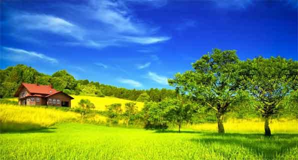 """我國""""十三五""""時期農村環境保護的思考"""