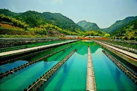 2016年二季度全國擬在建水廠建設項目